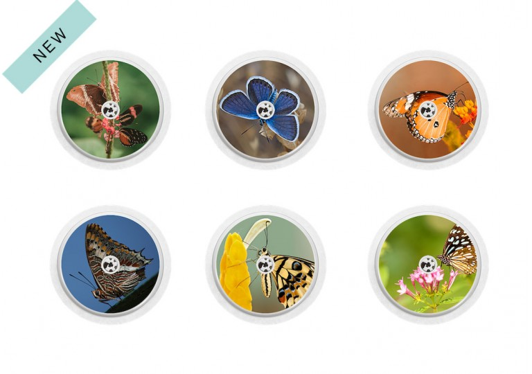 Freestyle Libre sticker Collection Butterfly