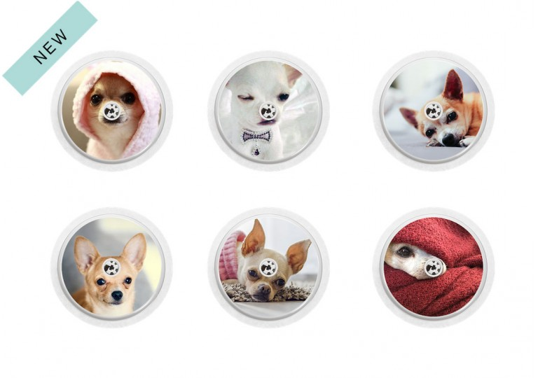 Freestyle Libre sticker Collection Chihuahua